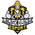 Teamlogo forRingkøbing Esport