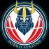 Teamlogo forHobro Vikings